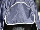 Turn-Out Rug OMSK RAIN 50_