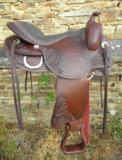 Freemax Western Cow Choco Short_
