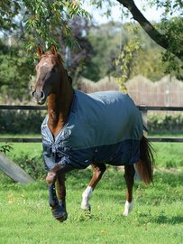 Thermo Turn-Out Rug ACTIVE 200