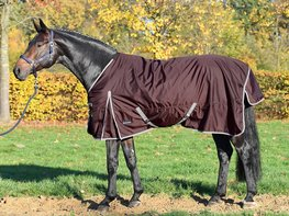 Thermo Turn-Out Rug ASTANA Light 100
