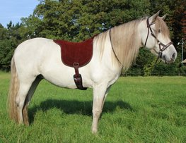 |SALE| Kifrahorse Barebackpad Suède Brown