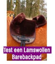 Testing a Barebackpad - only available within the Netherlands