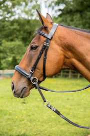Easytrek Bitless Bridle Black